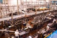 Niemcy – praca na produkcji spożywczej od zaraz