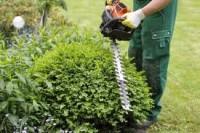 Ogrodnictwo – praca w Niemczech dla ogrodnika od zaraz