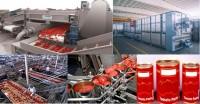 Niemcy praca na produkcji przecieru pomidorowego bez znajomości języka