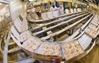 Praca w Niemczech przy produkcji spożywczej dla par – pakowanie