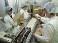 Przy pakowaniu – praca w Niemczech na produkcji w fabryce lodów