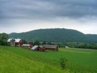 Dla pary – praca Niemcy na farmie w rolnictwie 2013
