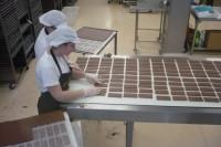 Praca w Niemczech na produkcji bez znajomości języka od zaraz Hamburg