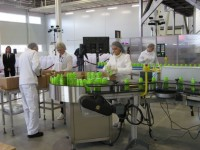 Pakowanie oferta pracy w Niemczech na produkcji bez znajomości języka Hamburg