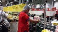 Praca w Niemczech produkcja spożywcza bez znajomości języka 01.2014 Hamburg
