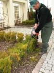 Dam fizyczną pracę w Niemczech od zaraz dla ogrodnika Bremen 2014