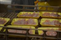 Oferta pracy w Niemczech przy pakowaniu drobiu na produkcji Schüttorf