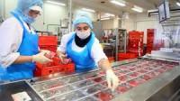 Oferta pracy w Niemczech bez języka dla par przy pakowaniu wędlin Hamburg