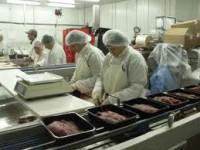 Praca w Niemczech przy pakowaniu mięsa w masarni bez języka od zaraz Drezno