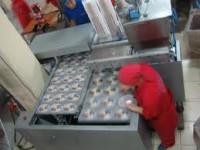 Praca w Niemczech produkcja ciastek bez znajomości jezyka Berlin od zaraz