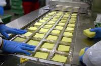 Pakowanie sera na produkcji praca Niemcy od zaraz bez języka Bremen