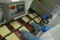Oferta pracy w Niemczech od zaraz bez języka na produkcji kanapek Berlin