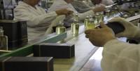 Stuttgart oferta pracy w Niemczech od zaraz bez znajomości języka pakowanie perfum