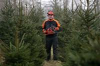 Niemcy praca sezonowa w leśnictwie przy choinkach bez języka Norymberga