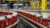 Od zaraz Niemcy praca bez znajomości języka produkcja keczupu Düsseldorf