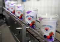 Praca Niemcy od zaraz produkcja jogurtów bez znajomości języka dla par Monachium