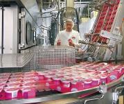 Oferta pracy w Niemczech 2018 bez języka na produkcji jogurtów od zaraz Stuttgart