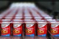 Dla par praca Niemcy bez znajomości języka na produkcji jogurtów od zaraz Stuttgart
