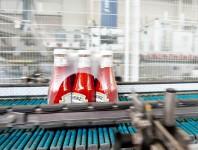 Dla par oferta pracy w Niemczech pakowanie keczupów od zaraz bez języka Drezno 2020