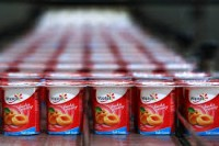 Bez znajomości języka Niemcy praca na produkcji jogurtów od zaraz fabryka Stuttgart
