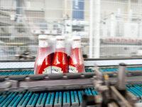 Dla par od zaraz Niemcy praca 2021 pakowanie keczupów bez znajomości języka w Dreźnie